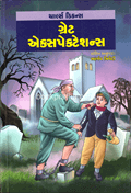 Great Expectations - Gujarati